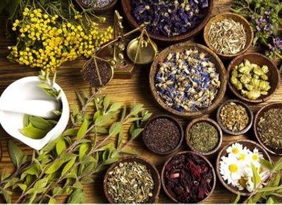 تولید گیاهان دارویی